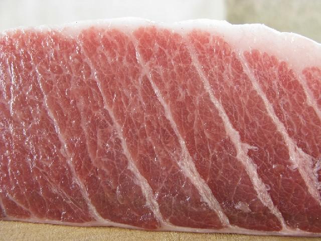 Ventresca di tonno