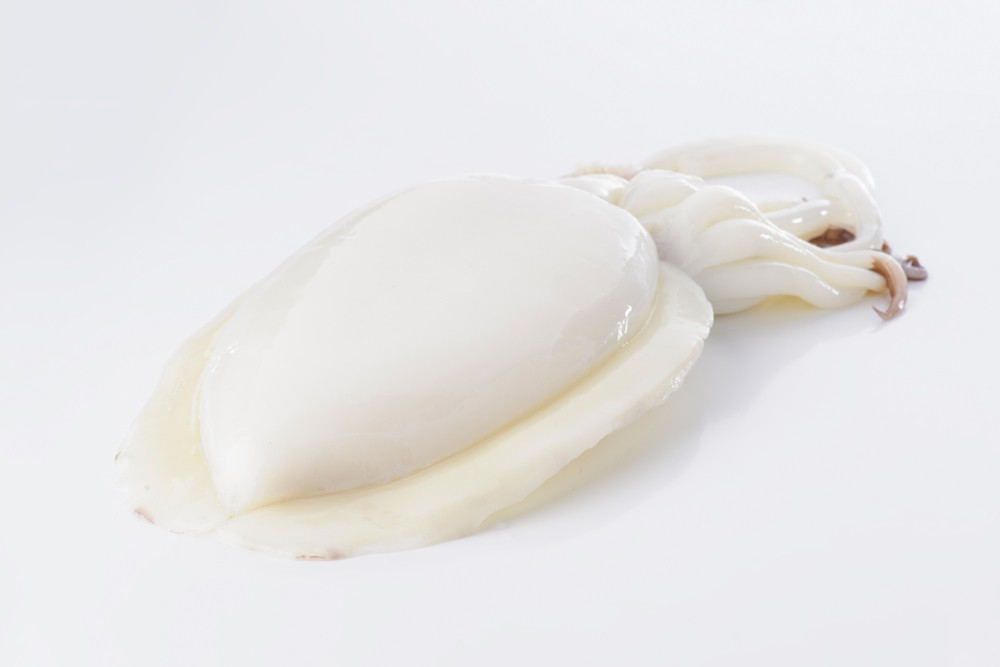 Seppia bianca