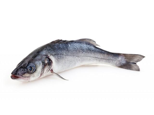 Costo e prezzo branzino spigola valori nutrizionali e for Cucinare branzino 5 kg